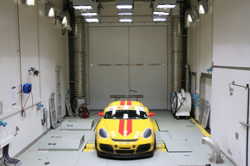 Cayman in Large Climate Chamber