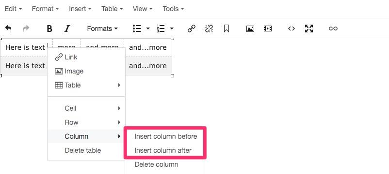 Insert column screenshot