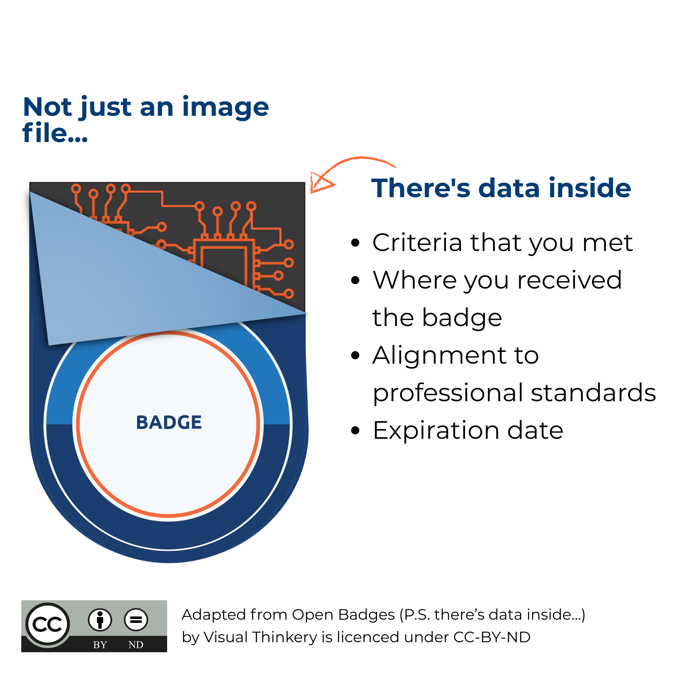 Behind the Badge, there's data inside.