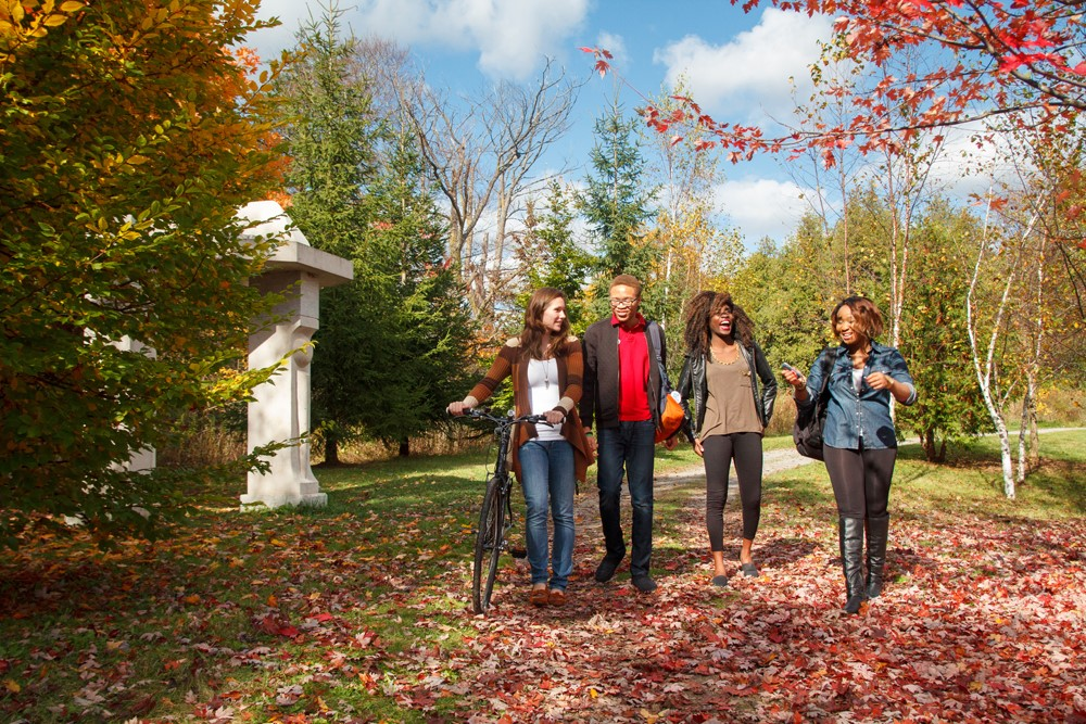 Four students walking along a path in the fall