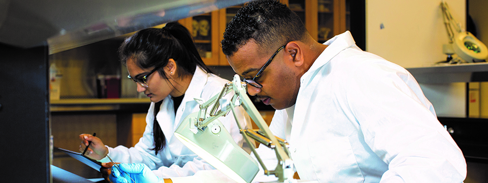 students at a microscope