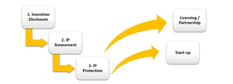 IP work flow