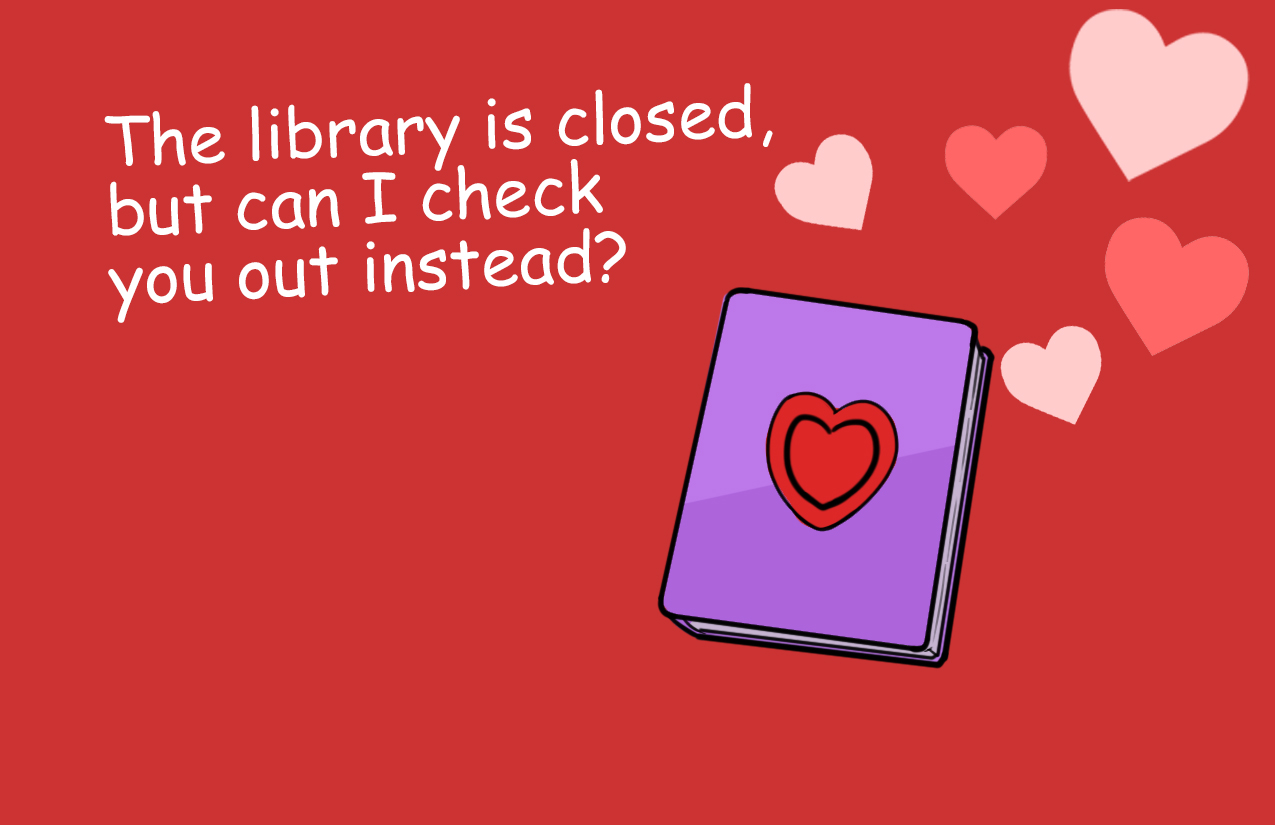 The library is closed but can I check you out instead?