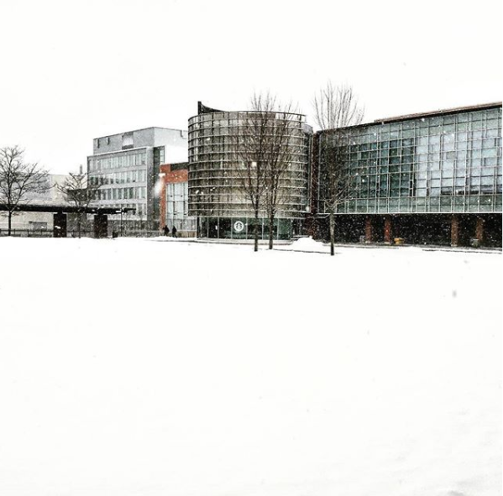 polonsky commons in the winter