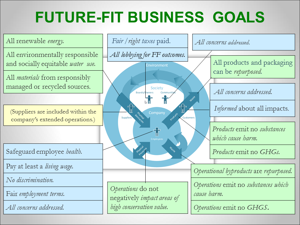 Future-fit business goals