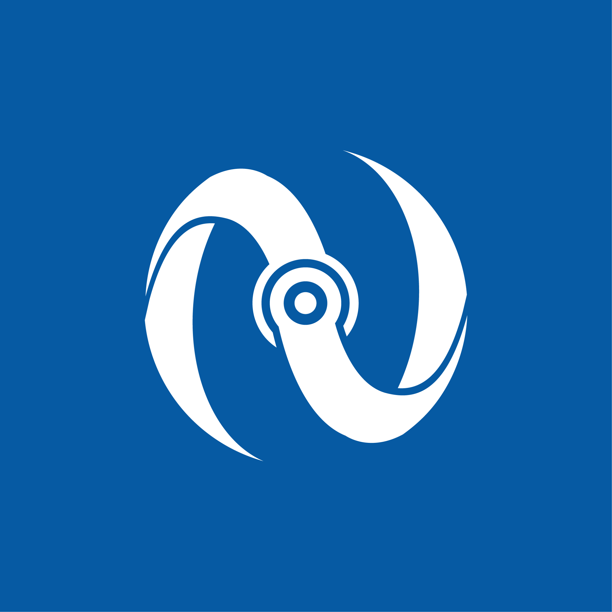 Netsoc Logo