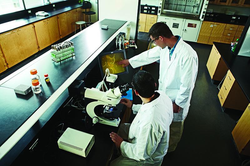 human health biology